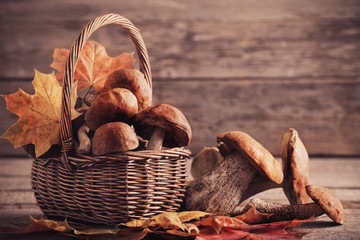 mushrooms in basket on wooden background