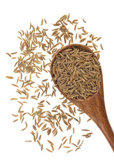 Dried cumin seeds in wooden spoon isolated on white background. Top view.