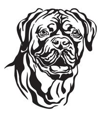 Decorative portrait of Dog Dogue de Bordeaux vector illustration