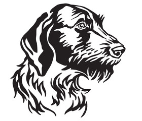 Decorative portrait of Dog German Wirehaired Pointer vector illustration
