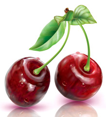 Wall Mural - Two Cherry on a white background