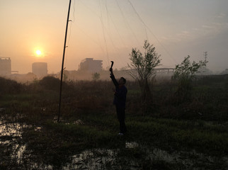 Environmentalist uses a machete to dismantle an illegal mist net that are death traps for migratory and resident bird species, in Yingdong