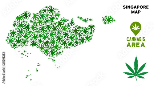 Weed Singapore map composition of marijuana leaves. Narcotic ...