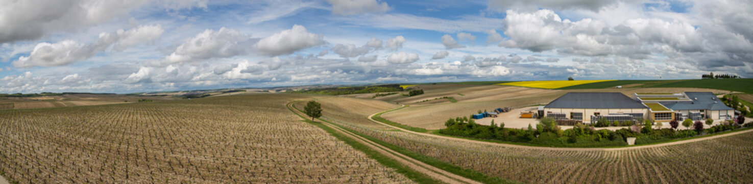 Vineyards and unidentified wine making facility in the Chablis region of Burgundy, France