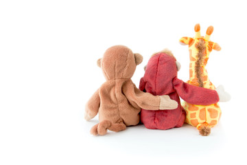 Friendship -Cute monkey with friends are holding in one's arms