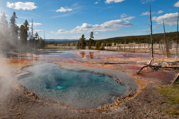 Steam rising off Firehole Spring on Firehole Lake Drive in Yellowstone National Park in Wyoming United States