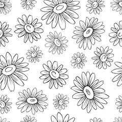 Chamomile wild field flower isolated on white background botanical hand drawn daisy ink sketch vector illustration, seamless floral pattern for design package tea, cosmetic, decorative textile, fabric