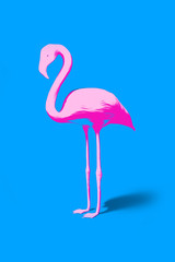 pink flamingo on turquoise background