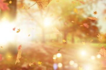 Hintergrund Stimmung Herbst