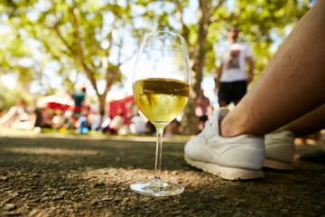 A glass of white wine standing on the ground in a park on a chilling party