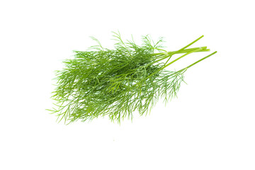Fresh green dill leaves bunch, raw organic leaf, isolated on white background