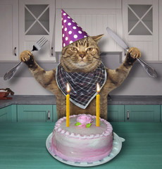 The cat in a cone hat with a knife and a fork eats the birthday cake with candles in the kitchen.