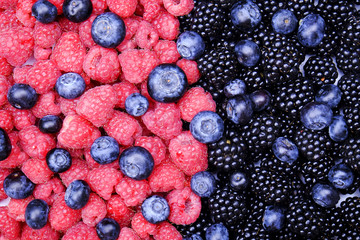 Fresh organic mixed berries: blueberry, raspberry & blackberry in harvest pile, white background. Clean eating concept. Healthy vegan snack, raw food diet. Close up, copy space, top view, flat lay