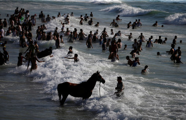 A horse is seen in the water as Palestinians swim to cool off in the Mediterranean Sea off the coast of Gaza City