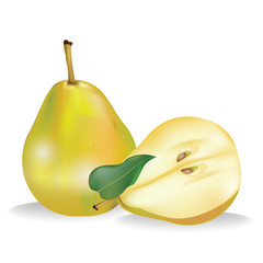 delicious juicy yellow pears with leaves on a white background vector illustration