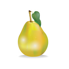 delicious juicy yellow pear with leaves on a white background vector illustration