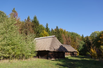 log house with a thatched roof