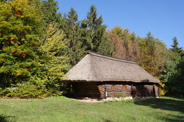 log house with alog house with a thatched roof thatched roof