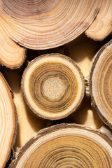 Core of juniper and sandalwood background