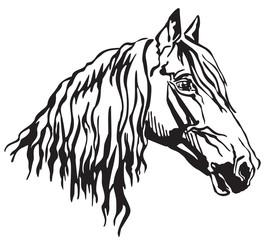 Decorative portrait of Orlov Trotter horse vector illustration