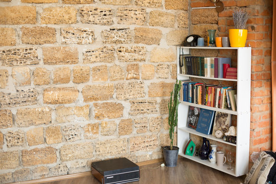 the background texture is Sandstone. Sandstone wall. brick Sandstone. shell rock brick wall. potted flowers on the floor. bookshelf with little things. interior conaty. guitar on the shelf