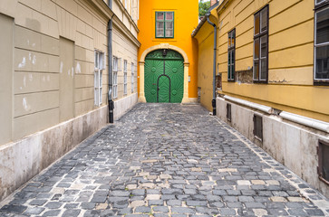 Cobblestone alley ending in an old green closed door
