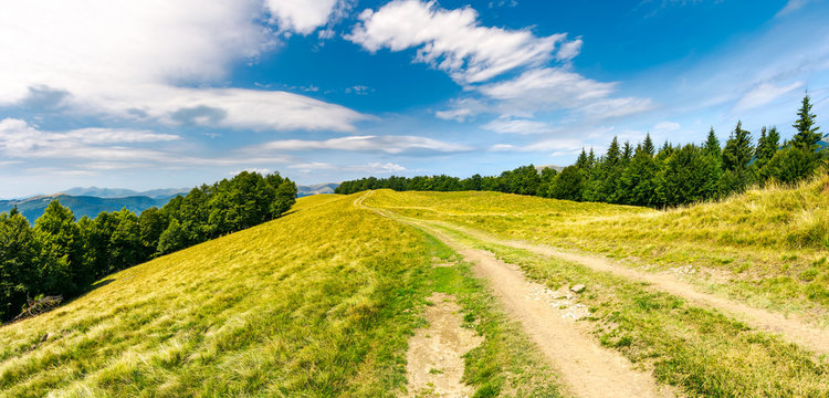 road through forested mountain ridge.  beautiful landscape of Svydovets ridge under the gorgeous cloudscape. lovely panorama of summer scenery
