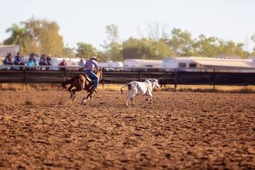Camp Draft Event , Rounding Up Cattle - Unique To Australia