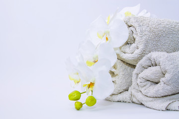soaps and orchid. spa and relaxation concept