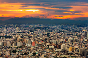 新宿高層ビルから見る東京の夜景