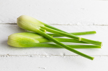 Fresh fennel isolated on white rustic wooden table