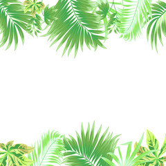 Tropical jungle vector background, frame with palm tree and leaves.