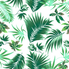 Seamless pattern tropical leaves of palm tree.