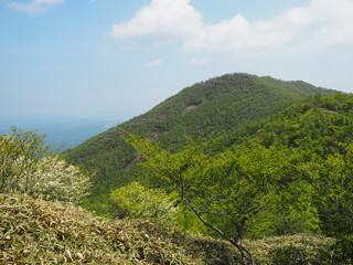 mountain cilmbing in Japan