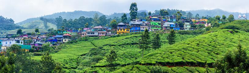 Panoramic beautiful village and tea plantations in Munnar, Kerala, India.