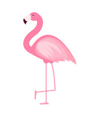 Cute Pink Flamingo Icon Vector Illustration