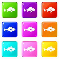 Fish icons of 9 color set isolated vector illustration