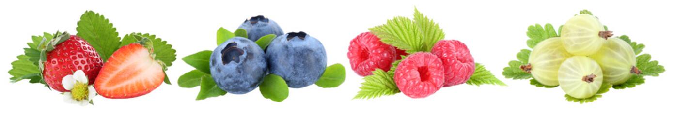 Wall Mural - Sammlung Beeren Erdbeeren Blaubeeren Himbeeren Früchte in einer Reihe isoliert Freisteller freigestellt