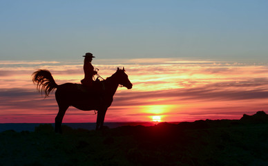 Silhouette of Cowgirl, ride on Arabian stallion in colorful sunset. Romantic concept for safari Africa background. Horse hiking on red rising sun