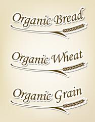 オーガニックの麦と文字のシンボル