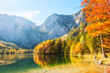 Colorful autumn trees on the shore of Hinterer Langbathsee lake in Alps mountains, Austria.