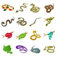 Snake icons set. Isometric illustration of 16 snake icons set vector icons for web