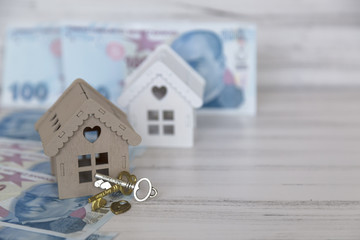 real estate and mortgage invesment . hundert turkish lira and wooden house on the white background