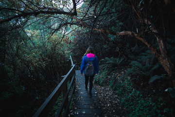 A woman backpacker with blue jacket walking alone on the stairway in the greenery nature.