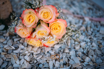 rose, flower, bouquet, roses, flowers, pink, wedding, love, nature, bunch, red, beautiful, white, floral, beauty, blossom, decoration, garden, yellow, celebration, marriage, flora, bloom, plant, green