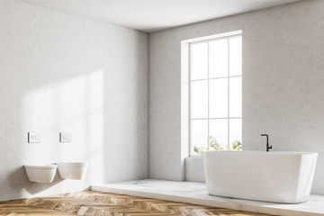 Loft white luxury bathroom, white tub, two toilets