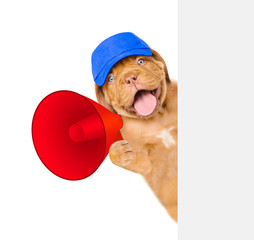 Funny puppy in blue cap with a megaphone behind white banner. isolated on white background
