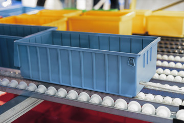 Plastic boxes on the roller conveyor.