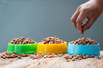 hand holding plastic bowl full with dog food on gray background