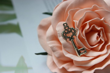 Beautiful picture of vintage silver key on rose Bud, vintage retro style, selective focus.Free space for text.
